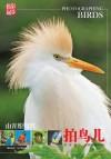 山光悦鸟性:拍鸟儿 by 刘冰 from  in  category