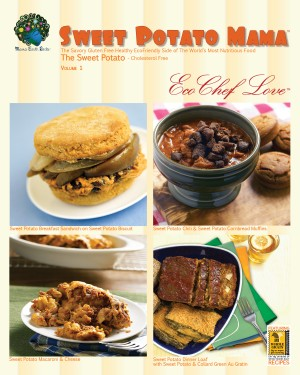 Sweet Potato Mama Cookbook The Savory Gluten Free Healthy Ecofriendly Side of the World's Most Nutritious Food: The Cholesterol Free Sweet Potato by Eco Chef Love from Bookbaby in General Novel category