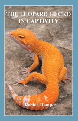 The Leopard Gecko in Captivity  by Robbie Hamper from Bookbaby in General Novel category