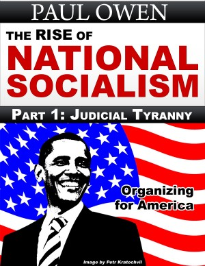 The Rise of National Socialism Part 1: Judicial Tyranny  by Paul Owen from Bookbaby in Politics category