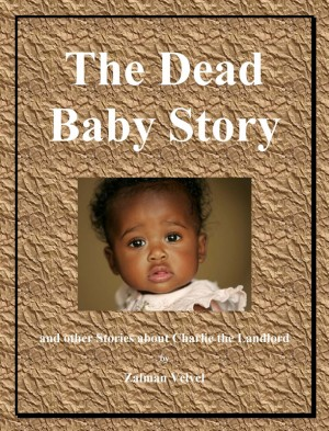 The Dead Baby Story And Other Stories About Charlie the Landlord by Zalman Velvel from Bookbaby in General Novel category