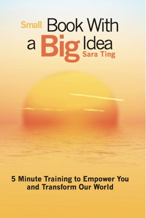 Small Book with a Big Idea 5 Minute Training to Empower You and Transform the World