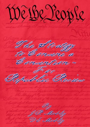We the People: The Strategy to Convene a Convention – For Republic Review by D E Mobley from Bookbaby in History category