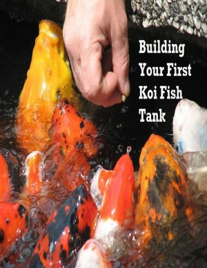 Building Your First Koi Fish Tank