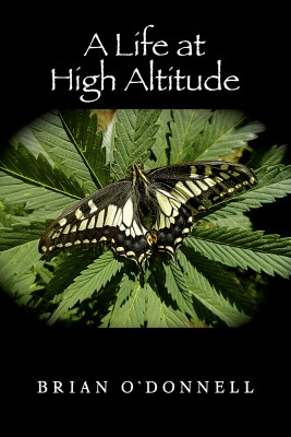 A Life At High Altitude by Brian O'Donnell from Bookbaby in General Novel category