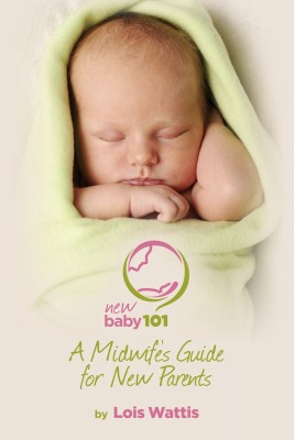 New Baby 101 - A Midwife's Guide for New Parents by Lois Wattis from Bookbaby in Family & Health category