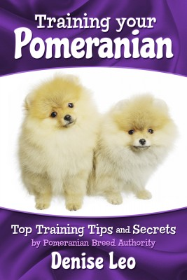 Training your Pomeranian - Top Training Tips and Secrets by Denise Leo from Bookbaby in Pet category