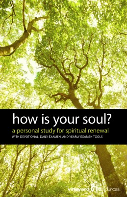 How Is Your Soul? by Vineyard Resources from Bookbaby in Religion category