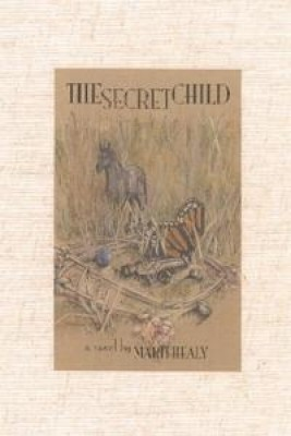 The Secret Child by Marti Healy from Book Hub Incorporated in General Novel category