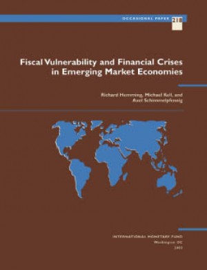 Fiscal Vulnerability and Financial Crises in Emerging Market Economies by Richard Hemming from Vearsa in Finance & Investments category