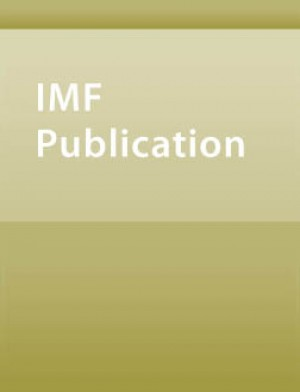 Coping with the Global Financial Crisis: Challenges Facing Low-Income Countries by Stefania Fabrizio from Vearsa in Finance & Investments category