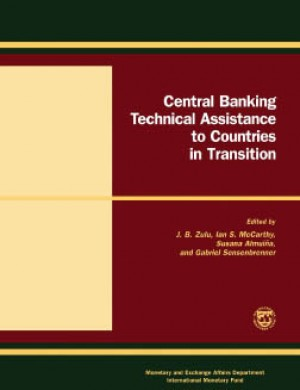 Central Banking Technical Assistance to Countries in Transition: Papers and Proceedings of the Meeting of Donor and Recipient Central Banks and International Institutions by Susana Almuina from Vearsa in Finance & Investments category