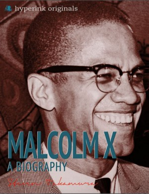 Malcolm X: A Biography by Steven Takamura from Vearsa in Autobiography,Biography & Memoirs category
