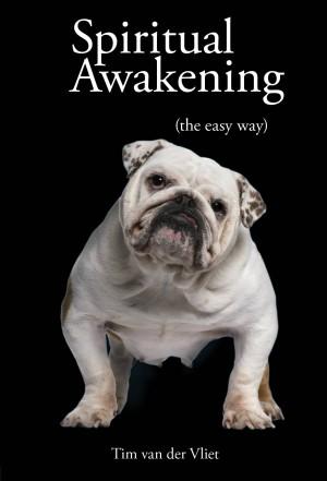 Spiritual Awakening (The Easy Way)