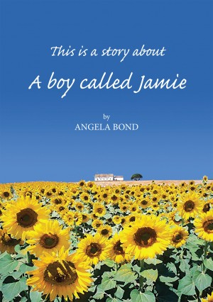 A Boy Called Jamie by Angela Bond from Vearsa in Teen Novel category