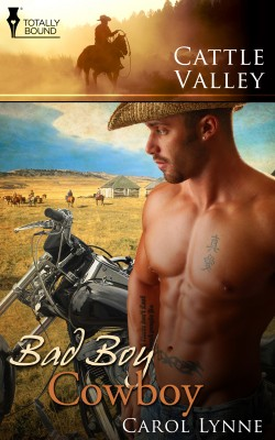 Bad Boy Cowboy by Carol Lynne from Vearsa in Romance category
