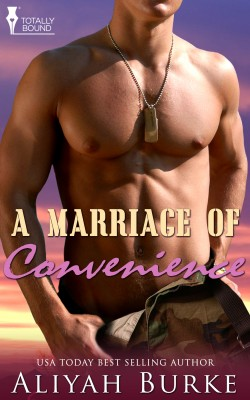 A Marriage of Convenience by Aliyah Burke from Vearsa in Romance category