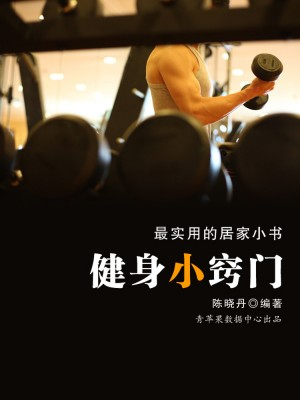 健身小窍门(最实用的居家小书) by 陈晓丹 from Green Apple Data Center in Teen Novel category