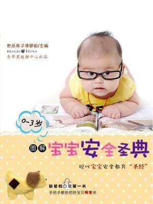 图解宝宝安全圣经(0-3岁) by 她品亲子课题组 from Green Apple Data Center in Teen Novel category