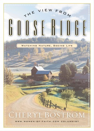 View from Goose Ridge by Cheryl Bostrom from HarperCollins Christian Publishing in Religion category
