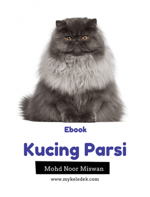 Kucing Parsi by Mohd Noor bin Miswa from MOHD NOOR BIN MISWAN in Pet category