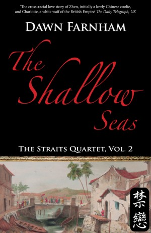 The Shallow Seas: A tale of two cities - Singapore and Batavia by Dawn Farnham from Monsoon Books in Romance category