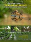 Pictorial Guide To The Plant and Bird Life of Byram Mangrove Forest, Penang - text