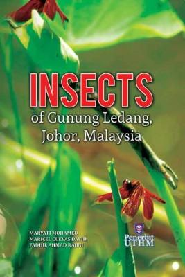 Insects Of Gunung Ledang, Johor, Malaysia