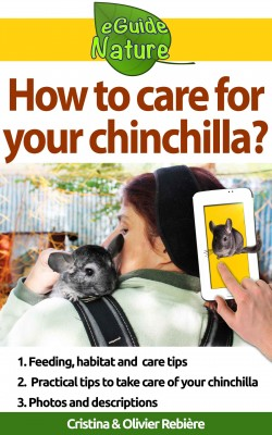 How to care for your chinchilla? by Olivier Rebiere from PublishDrive Inc in Pet category