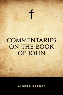 Commentaries on the Book of John by Albert Barnes from PublishDrive Inc in Christianity category