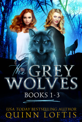 The Grey Wolves Series Collection Books 1-3 by Quinn Loftis from PublishDrive Inc in General Novel category