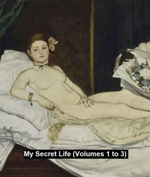 My Secret Life (Volumes 1 to 3) by Anonymous from PublishDrive Inc in General Novel category