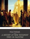 A History of New Testament Times in Palestine, 175 B.C.  70 A.D. - text