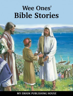 Wee Ones Bible Stories by Anonymous Author from PublishDrive Inc in Teen Novel category