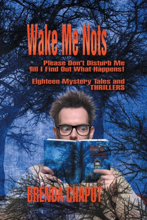 Wake Me Nots by Brenda Chaput from Strategic Book Publishing & Rights Agency in True Crime category