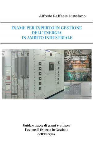 ESAME PER ESPERTO IN GESTIONE DELL'ENERGIA -Settore Industriale