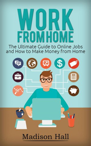 Work from Home: The Ultimate Guide to Online Jobs and How to Make Money from Home by Madison Hall from StreetLib SRL in Business & Management category