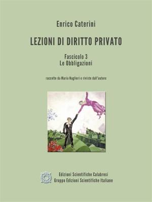 Lezioni di Diritto Privato - Fascicolo 3 - Le Obbligazioni by Enrico Caterini from StreetLib SRL in Law category