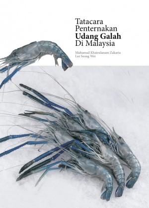 TATACARA PENTERNAKAN UDANG GALAH DI MALAYSIA