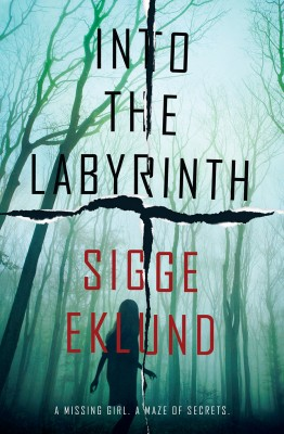 Into the Labyrinth by Sigge Eklund from Vearsa in General Novel category