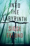 Into the Labyrinth by Sigge Eklund from  in  category