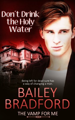 Don't Drink the Holy Water by Bailey Bradford from Vearsa in General Novel category