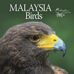 MALAYSIA Birds by Tourism Malaysia from Tourism Malaysia in Travel category