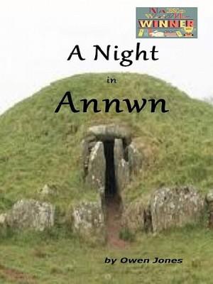 A Night In Annwn by Owen Jones from XinXii - GD Publishing Ltd. & Co. KG in General Novel category